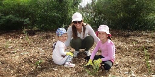 Community tree planting in Bringelly