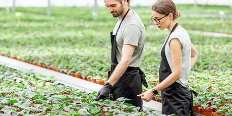 Sydney Consultation Workshop – Horticulture and Nursery project tickets