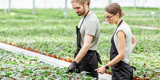 Adelaide Consultation Workshop – Horticulture and Nursery project