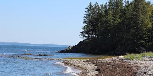 Service Saturday: Coastal Cleanup (Boothbay, ME)