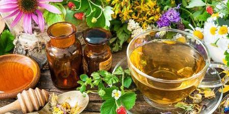Medicinal Herb Garden Workshop
