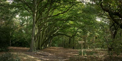 Norfolk Walking Festival: Walking the path of the peaceful warrior woman