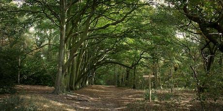 Norfolk Walking Festival: Walking the path of the peaceful warrior woman tickets