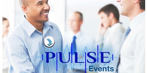 Pulse Networking and Coaching Event for Entrepreneurs and Investors - JHB Jan 2020