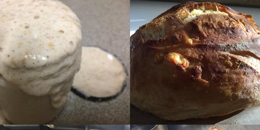 Introduction to Sourdough - Central Coast NSW