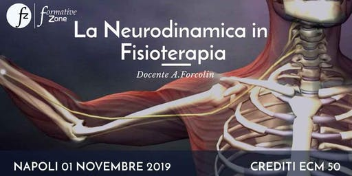 La Neurodinamica In Fisioterapia