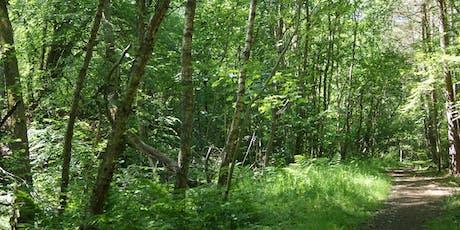 Land of Oak & Iron Wildlife Group: Ancient Woodland Walk tickets