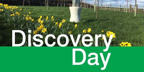 Aura-Soma Discovery Day