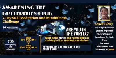 7 Day $100 Mindfulness/ Meditation Belief Challenge
