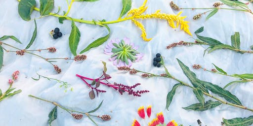 Botanical Bundle Dye Workshop