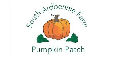 South Ardbennie 2019 Pumpkin Picking