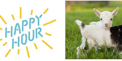 Baby Goat Happy Hour!!!