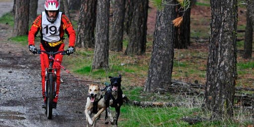 Spokane Dirt Rondy - 2 Day Dog Powered Sports Event 2019