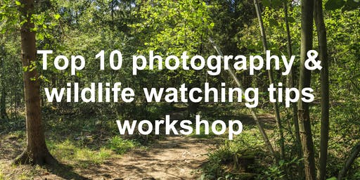 Top 10 photography & wildlife watching tips workshop