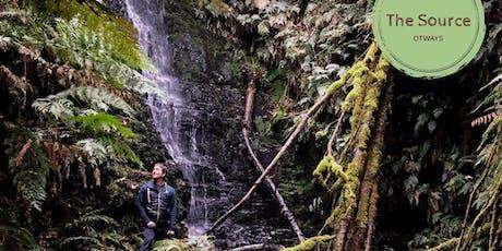 Forest Bathing & Shamanic Drum Journey in Ancient Otways Rainforest tickets