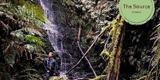 Forest Bathing & Shamanic Drum Journey in Ancient Otways Rainforest