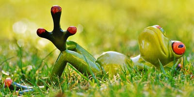 Škola vnitřního pohodlí - 8-týdenní výcvik v mindfulness