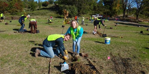 Tree Planting with Catonsville Tree Canopy Project