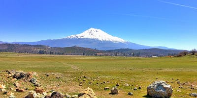 Mount Shasta Retreat 2020: Open to Channel