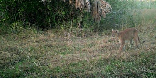 Florida Panthers: Strolling Science Seminar