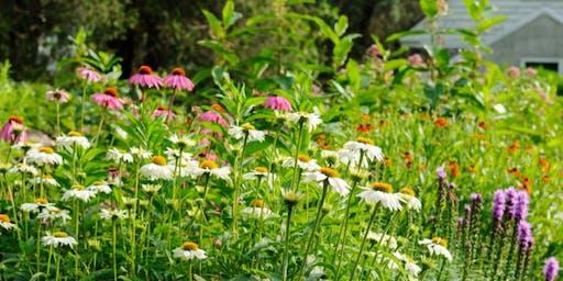 Make a Mason Bee House & End-of-Season Gardening Workshop