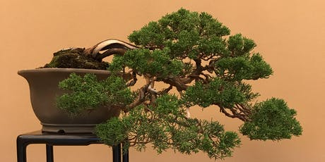 The Art of Bonsai tickets