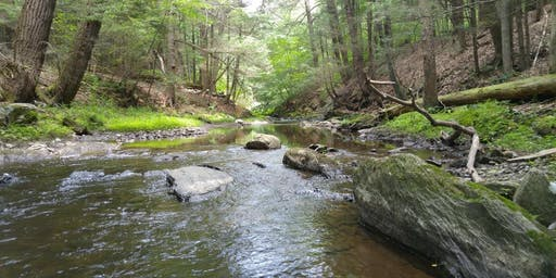 Aquifer & Stream Corridor Protection: Planning Strategies for Local Water Conservation