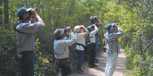Adult Beginner Birdwalk October 19th 2019