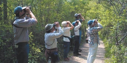 Adult Beginner Birdwalk Saturday October 26th 2019