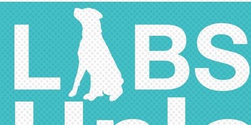 LABS Unleashed BootCamp w/ Brooke Silva