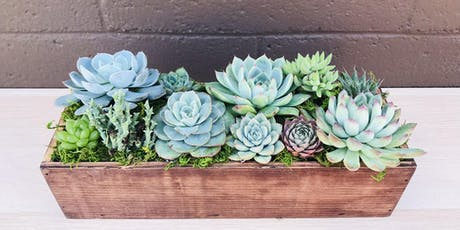 DIY Succulent Centerpiece @ Sweet Digs tickets