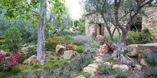 Nature Gardening Series • Easiest California Native Plants for Your Garden with James Maxwell