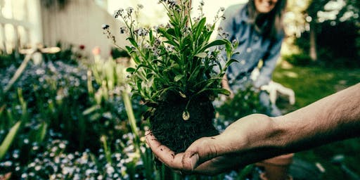 Plants & People: Cultivating Well-Being Through Nature