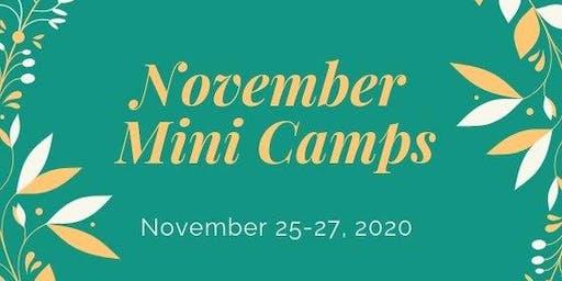 Palm Valley School Nov. 25-27 Mini-Camp