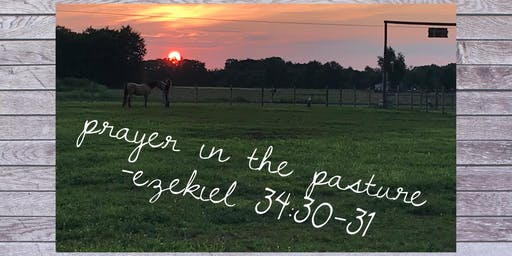 Prayer in the Pasture