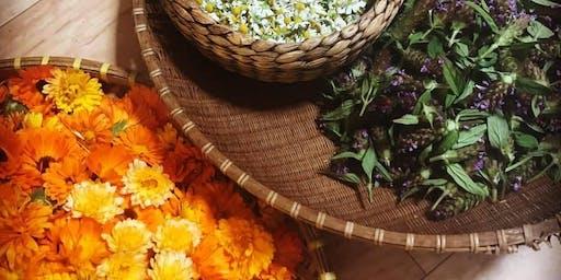 Seasonal Shift: Seasonal Wellness Workshop (Fall 2019)