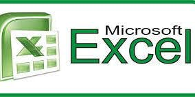 Microsoft Excel: Functions and Pivot Tables