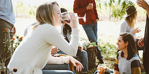 Winery Tour from Chicago to Southwest Michigan