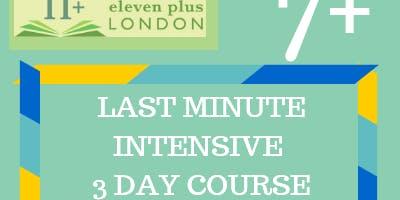 7+ Last Minute Intensive 3 Day Course (21st - 23rd Dec / 29th - 31st Dec)