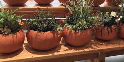 Make it & Take it: Pumpkin Planters