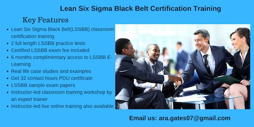 Lean Six Sigma Black Belt (LSSBB) Certification Course in Carson City, NV