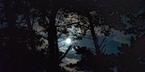Gardening Seasonally & By the Moon Signs!
