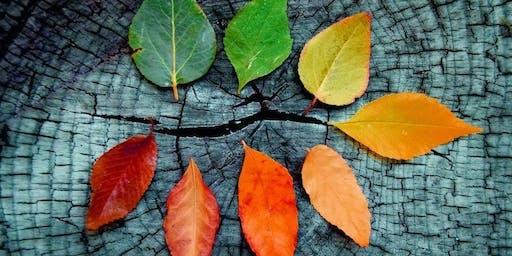 Awakening into Autumn: A Self Care Retreat