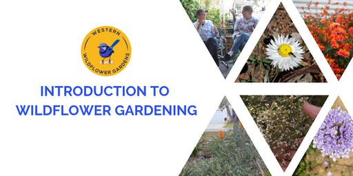 Introduction to Wildflower Gardening Kambarang Style