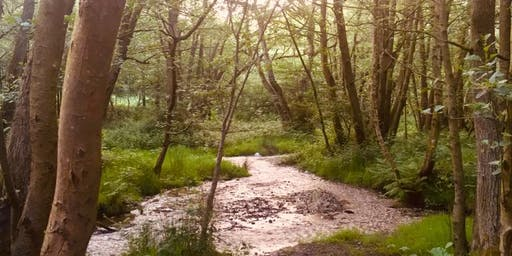 Nature and Hypnotherapy
