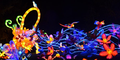 Magical Chinese Lantern Festival  tickets