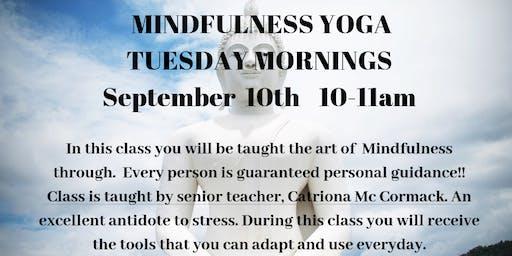 Mindfulness Tuesday Morning Yoga