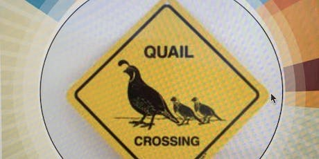 Quail Crossing's Neighborhood Social tickets