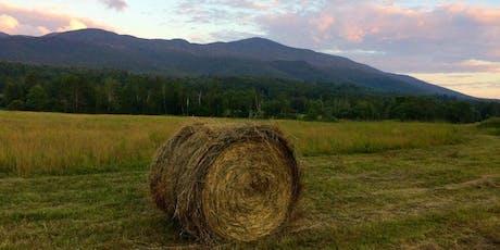 White Mountain Wellness: A mindful adventure retreat tickets