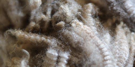 Wool 101